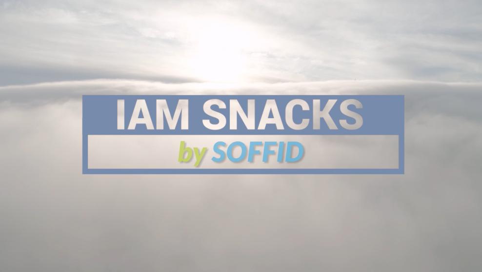 IAM Snacks by Soffid